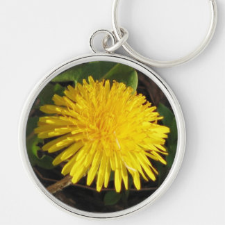 Lovely Dandelion Silver-Colored Round Keychain