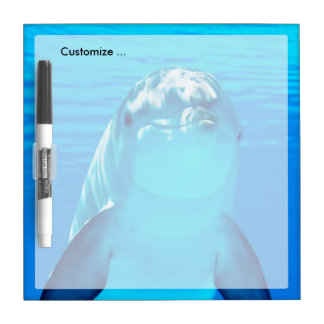 Lovely Dolphin Underwater Sea Life Dry Erase Whiteboard