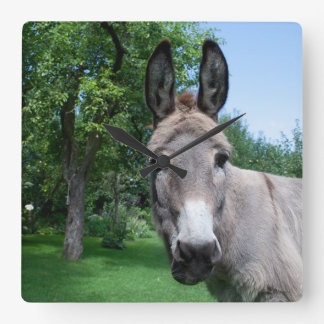 Lovely Donkey Portrait Wall Clock