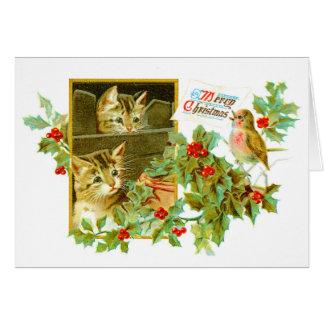 Lovely Kitties and Robin | Cute Vintage Christmas Card