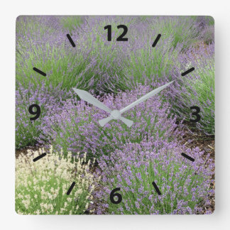 Lovely Lavender Clock
