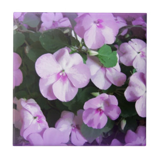 Lovely Lavender Impatiens Tile
