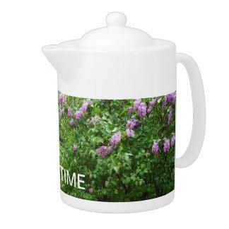 Lovely Lilac Bush