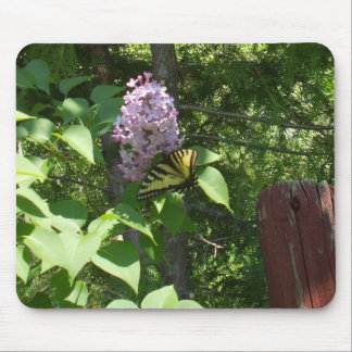 Lovely  Lilac Bush and a Butterfly Mouse Pad
