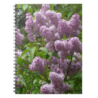 Lovely Lilac Bush Notebooks