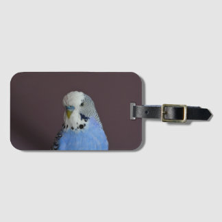 Lovely Macro Budgie Bird Bag Tag