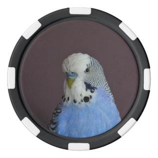 Lovely Macro Budgie Bird Poker Chips
