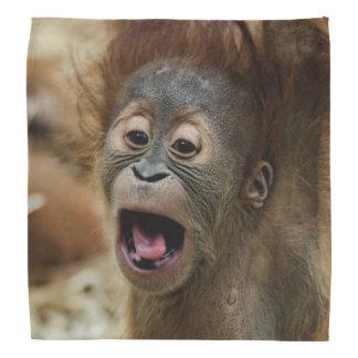 lovely Orang Baby Head Kerchiefs