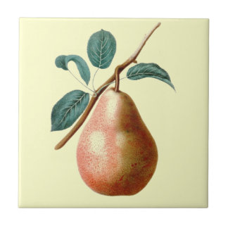 LOVELY PEAR TILE