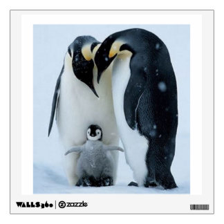 Lovely Penguin Family - Wall Decal Square