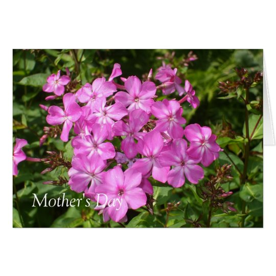 Lovely Pink Flower Bouquet Greeting Card