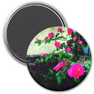 Lovely Pink Rose Magnet