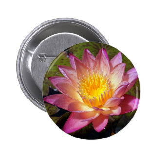 Lovely Pink Water Lily 2 Inch Round Button