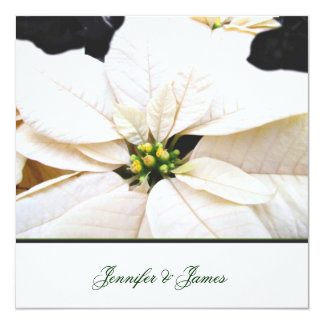 Lovely Poinsettia Wedding Invitation