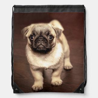 Lovely Puppy Pug, Dog, Pet, Animal Drawstring Bag