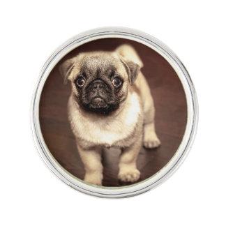 Lovely Puppy Pug, Dog, Pet, Animal Lapel Pin