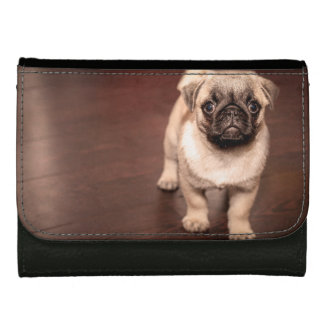 Lovely Puppy Pug, Dog, Pet, Animal Leather Wallet