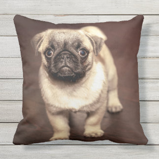 Lovely Puppy Pug, Dog, Pet, Animal Outdoor Pillow