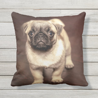 Lovely Puppy Pug, Dog, Pet, Animal Throw Pillow