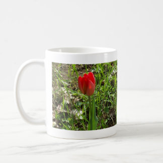 Lovely Red Tulip about to Open Coffee Mug