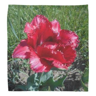 Lovely Red Tulip Bandana