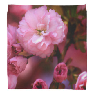 Lovely Spring Pink Cherry Blossoms Head Kerchief