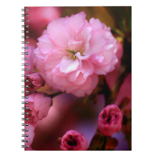 Lovely Spring Pink Cherry Blossoms Note Book