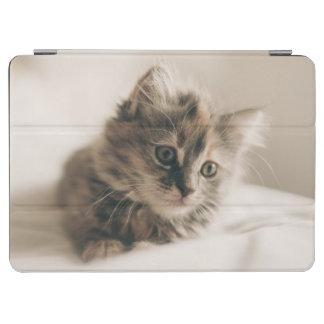 Lovely Sweet Cat Kitten Kitty iPad Air Cover