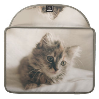 Lovely Sweet Cat Kitten Kitty MacBook Pro Sleeves