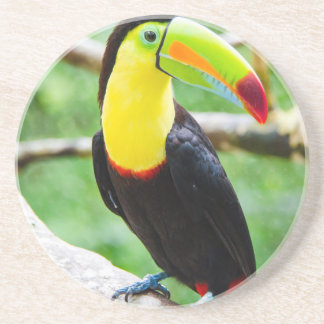 Lovely Toucan Beverage Coasters