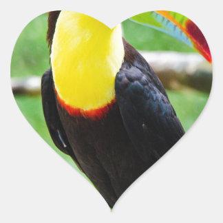 Lovely Toucan Heart Sticker
