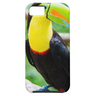 Lovely Toucan iPhone 5 Cover
