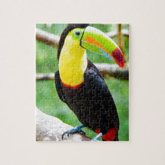 Lovely Toucan Jigsaw Puzzle