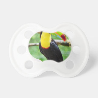 Lovely Toucan Pacifier