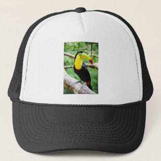 Lovely Toucan Trucker Hat