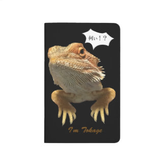 Lovely unique lizard! journal