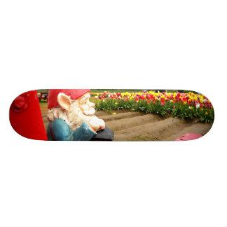Lovely View Skate Boards