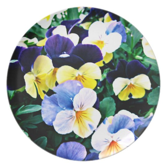 Lovely Viola Plate
