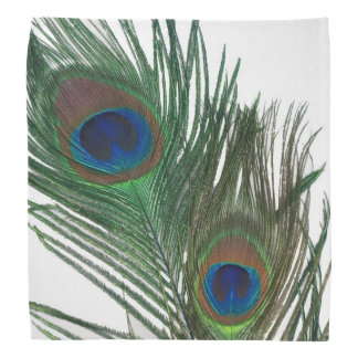 Lovely White Peacock Feathers Head Kerchief