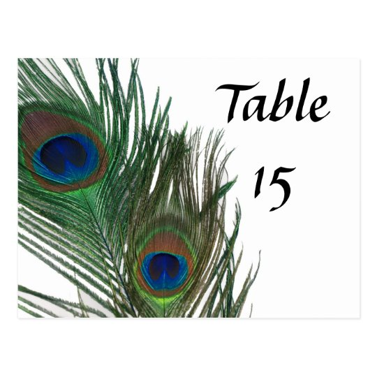Lovely White Peacock Wedding Table Numbers Postcard