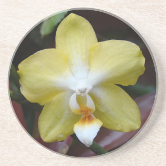 Lovely Yellow Orchid Drink Coaster