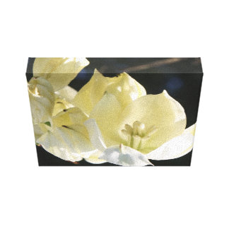 Lovely Yucca Bloom Canvas Print