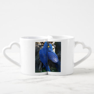 Lovers' Mug Set Parrots