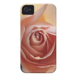 Lovestruck iPhone 4 Case-Mate Cases