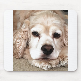 ***LOVING COCKER SPANIEL*** MOUSE PAD