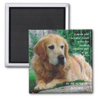 Loving Dogs Square Magnet