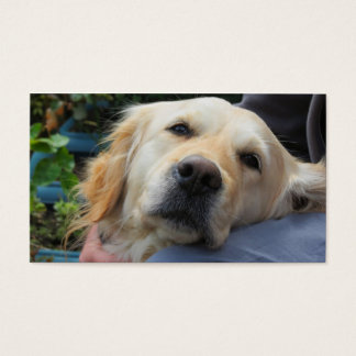Loving Labrador Business Card