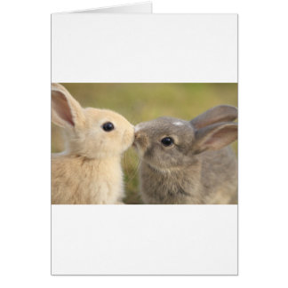 loving rabbit card