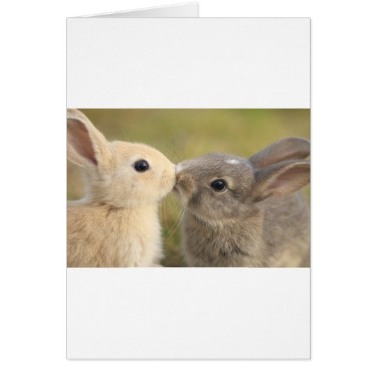 loving rabbit card