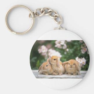 loving rabbits basic round button keychain